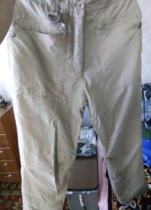 Утепленные спортивные штаны crane