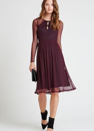 Кружевное платье миди bcbgeneration