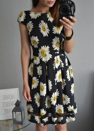 Платье в ромашки dorothy perkins