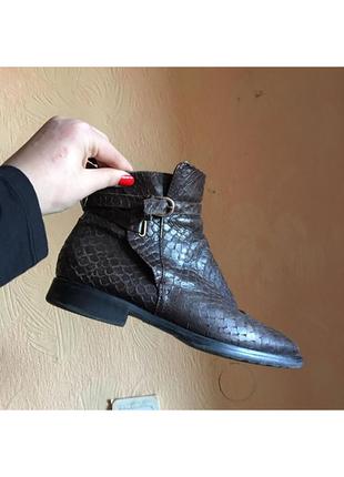 Кожаные ботинки под питона италия  mana