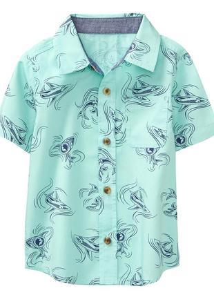 Рубашка коттоновая на мальчика 5т с акулой