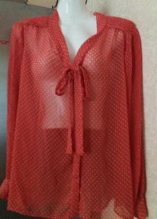Блуза-14р--reacockz-с актуальным в этом сезоне бантом и рукавами гофре