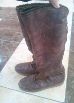 Шкіряні зимні чоботи geox