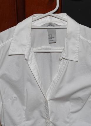 Біленька блузочка2