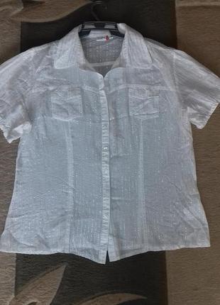 Блуза хлопковая размер 541
