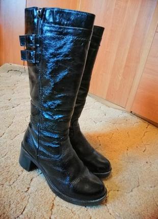 Зимние кожаные лакированные сапоги сапожки  на меху цегейка украина на каблуку 39размер1