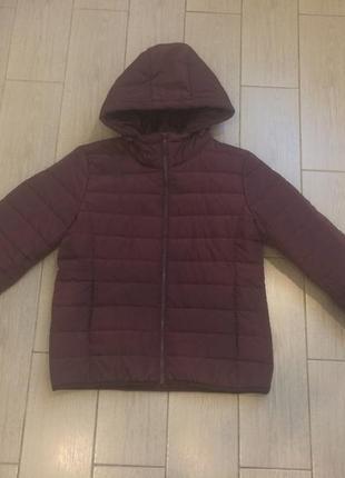 Курточка на утеплителе1