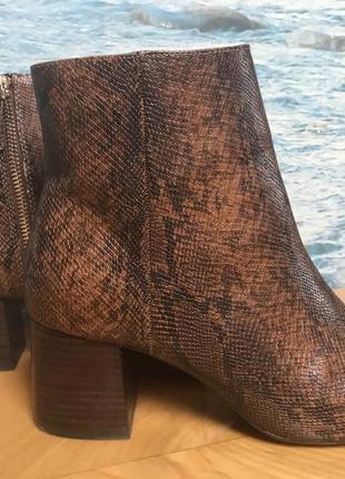 Крутие ботинки змея stradivarius1
