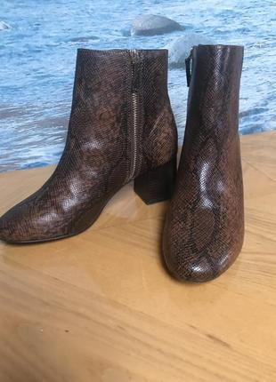 Крутие ботинки змея stradivarius2