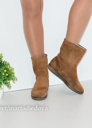 Замшевые ботинки полусапожки утеплены, натуральная кожа, бренд sansibar2