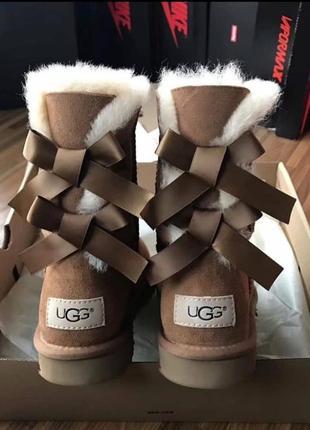 Зимняя обувь угги оригинал4
