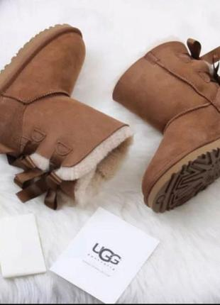 Зимняя обувь угги оригинал5