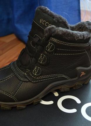 Ботинки кожаные5