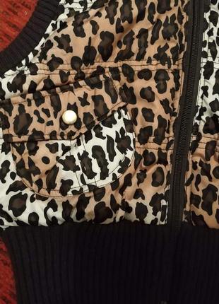 Леопардовый принт, жилет,ashley, usa3