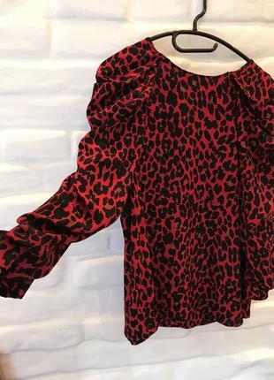 Блуза zara с леопардовым принтом4