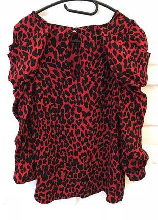 Блуза zara с леопардовым принтом5