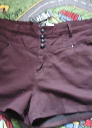 Стильные короткие шорты для аппетитных форм1