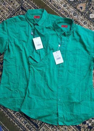 Рубашки котоновые мужские