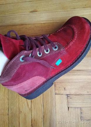 Моднi черевички kickers