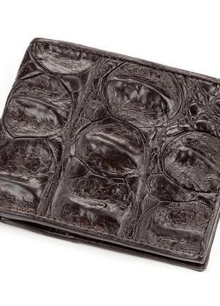 Портмоне crocodile leather 18188 из натуральной кожи крокодила коричневое, коричневый
