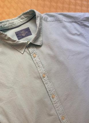 Полосатая рубашка с коротким рукавом/большой размер/жатка