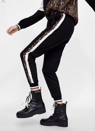 Штаны xs s m l брюки джоггеры чиносы спортивные с лампасами по бокам леопард