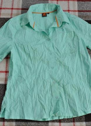 Рубашка iguana