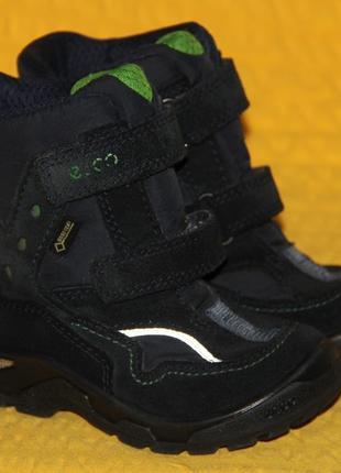 Ботинки ecco gore-tex р.24 стелька 15 см 1306504810574