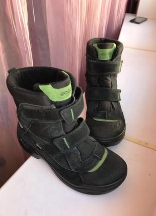 Детские зимние ботинки ecco 38р.