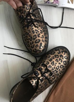 Леопардовые лоферы туфли на шнурках