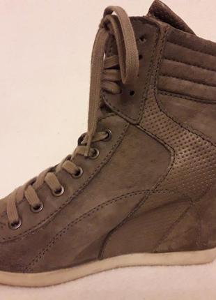 Стильные кожаные ботинки, сникерсы на танкетке фирмы mjus ( италия) р. 38 стелька 24,5 см