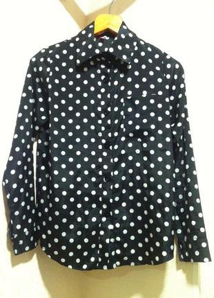 Блузка рубашка сорочка в горошек