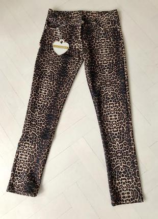 Брюки, штаны, легенцы леопардовый принт, италия, стрейчевые