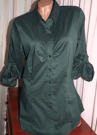 Красивая рубашка (хл замеры) цвет глубокий, без нюансов, отлично смотрится
