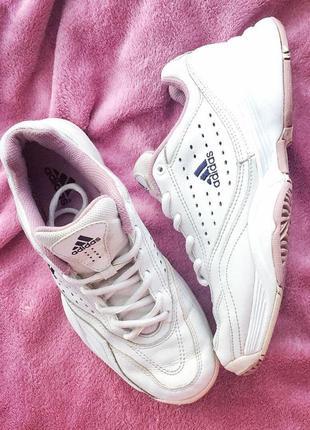 Кросівки adidas originals