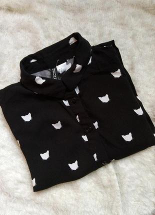 Стильная рубашка на девочку, блузка с котами,черная рубашка,школьная рубашка h&m