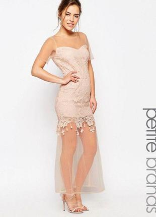 Новорічний розпродаж ! нежное платье maya petite