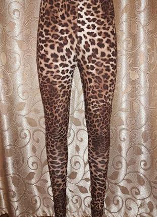 Красивые женские леопардовые лосины be beau
