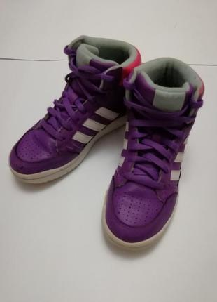 Деми -ботинки-крассовки adidas, размер 35, стелька 21 см.