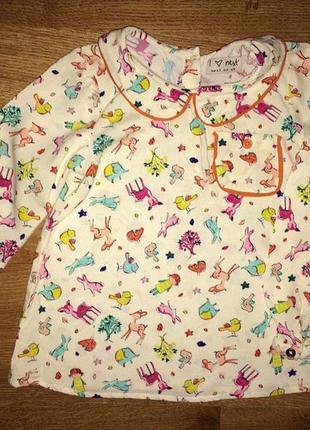 Дуже крута блуза некст на 1-2 р