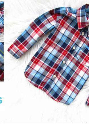 Качественная и стильная рубашка carter's