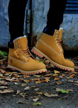Ботинки timberland сlassic (рыжий). топ качество!