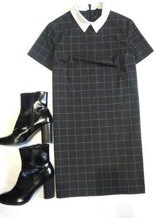 Платье в клетку/офисное платье с воротником