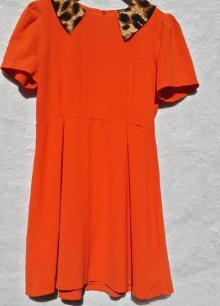 Платье  с воротником леопардового принта