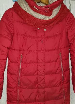 Зимняя куртка clasna s m