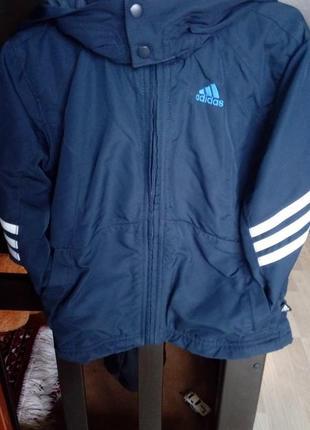 Куртка дитяча adidas осінь весна
