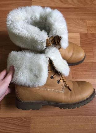 Зимние/демисезонные ботинки от бренда t.taccardi
