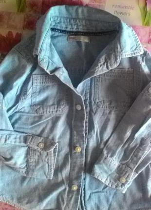 Хлопковая рубашка под джинс-индия