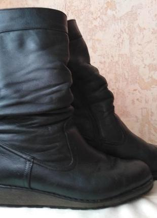 Кожаные сапоги avelini размер 38