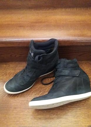 Сникерсы ботинки paul green